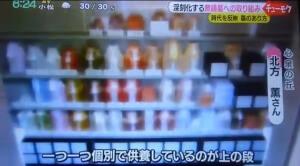 石川テレビ放送・永代供養墓心泉・個別安置の様子